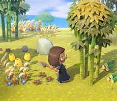 How To Farm Animal Crossing: New Horizons Tarantulas For Fun And Profit