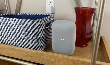 google-assistant's-guest-mode-for-nest-speakers-will-let-you-go-incognito