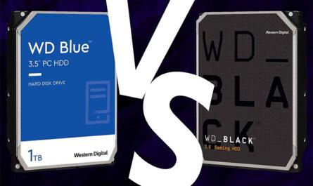 wd-blue-vs-black