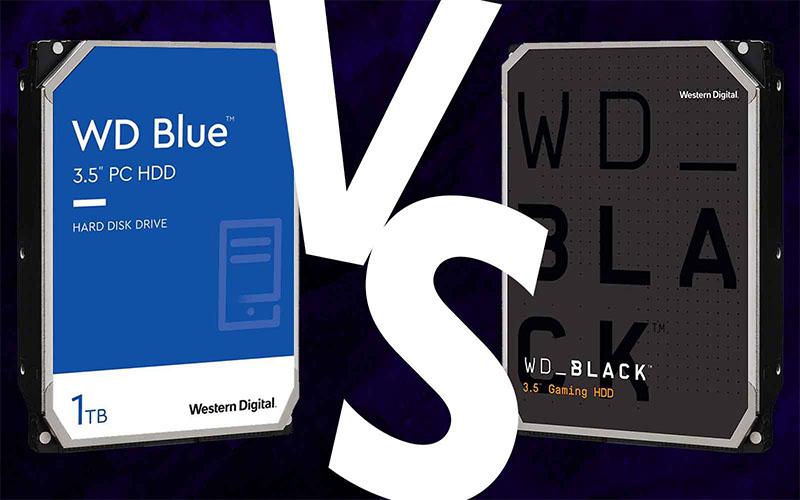 WD Blue vs Black