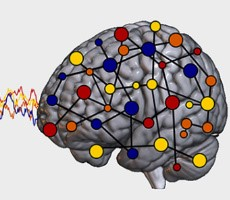 Neuroscientists Use Pac-Man Style Video Games To Study The Origin Of Human Emotions