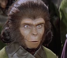Scientists Go Bananas Creating Human-Monkey Hybrids, What Could Go Wrong?