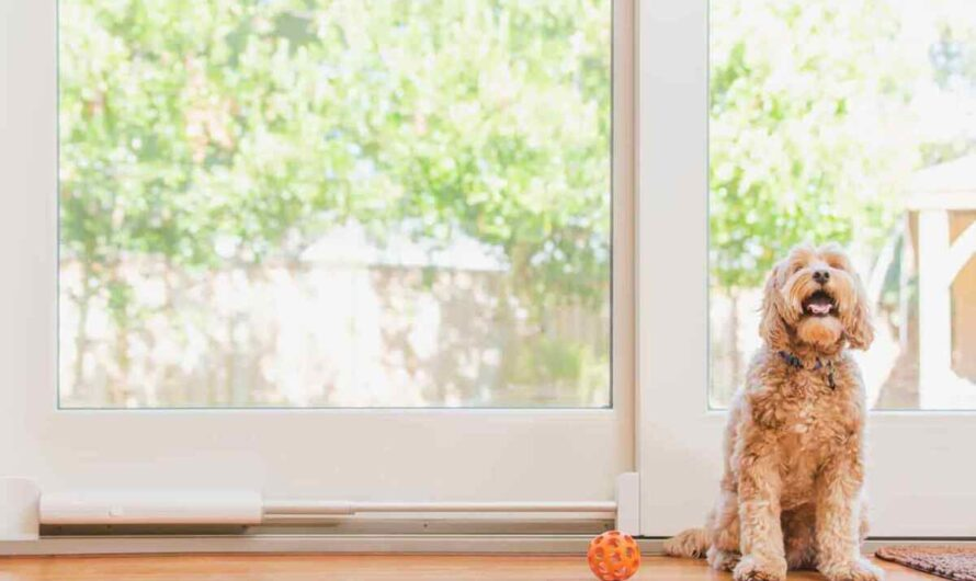 Wayzn Smart Pet Door review: This motorized device lets Fido open the sliding door himself