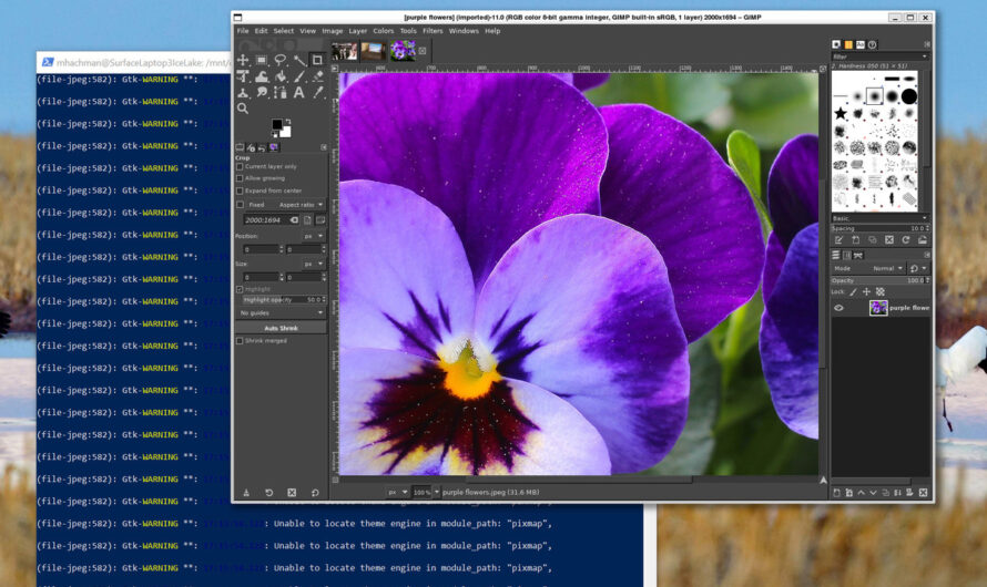 How to add Linux apps to Windows in just one easy step